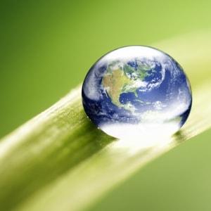 Innovar en la industria para cuidar a nuestro planeta